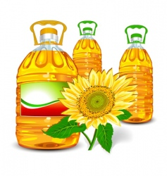 Sunflower oil vector