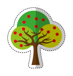 tree plant ecology symbol vector image