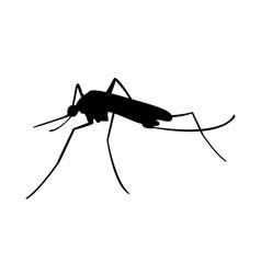 Mosquito black silhouette vector image