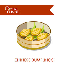 Chinese dumplings in plate isolated on white vector