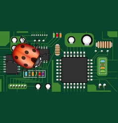 bug on a electric circuit board vector image