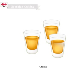 Chacha or Grape Vodka Popular Dink in Georgia vector image