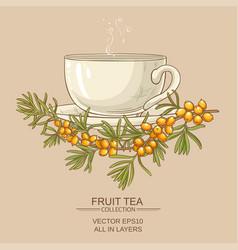 Cup of buckthorn tea vector