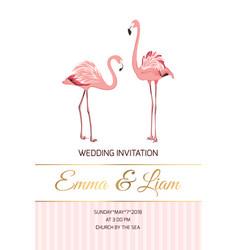 exotic pink flamingo birds couple wedding invite vector image