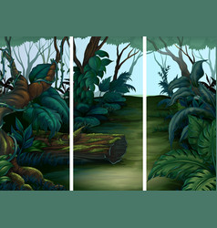forest scenes with lots of trees vector image