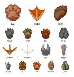 Isolated object animal and print icon vector