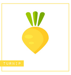isolated yellow turnip memory training card vector image