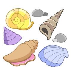 Sea shells collection vector