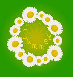 Summer chamomile flowers in a circle vector