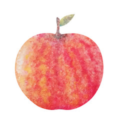 watercolor red apple vector image