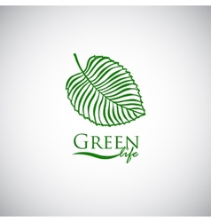 Green life doodle leaf like logo icon vector image vector image