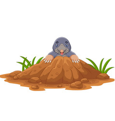 Cartoon mole come out hole vector