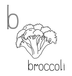 Coloring page fruit and vegetable abc letter b vector