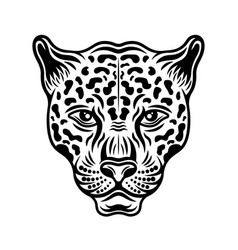 jaguar head front view vector image