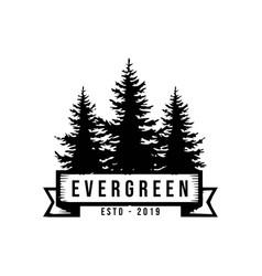 Pine silhouette evergreen timberland logo design v vector