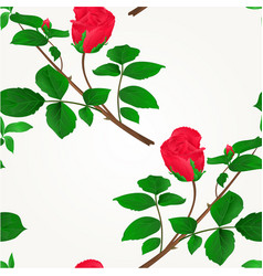 seamless texture rosebud red stem with leaves vector image