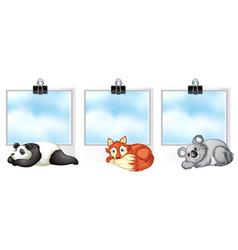 Three frames with wild animals vector