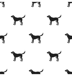 Labrador icon in black style for web vector image