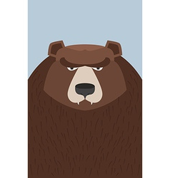 big brown bear vector image