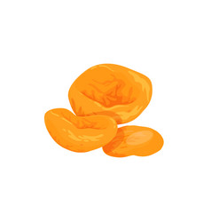 Dried apricots icon vector