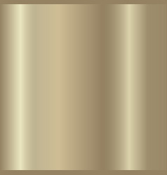 Golden metallic bronze silver chrome copper vector