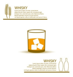 whisky glass simple color infographics theme eps10 vector image