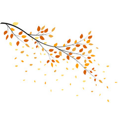autumn tree with yellow leaves vector image vector image