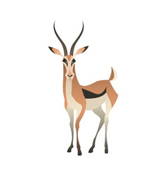 Jungle wild antelope gazelle savannah animal vector