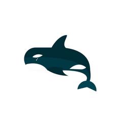 Marine life killer whale orca cartoon sea fauna vector