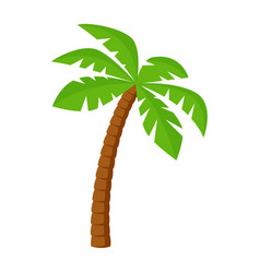 Palm tree icon in flat style vector
