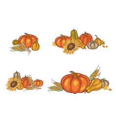 Pumpkin and corn vector