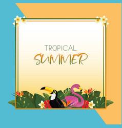 tropical summer square frame design vector image