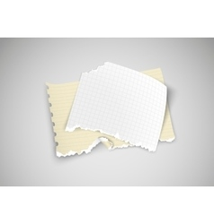 Two pieces of torn paper on light background vector