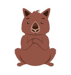 Wombat australian fauna on white background vector