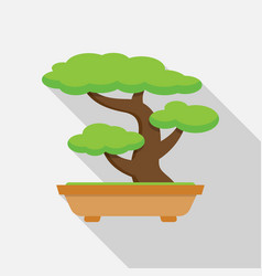 tree bonsai japanese tree vector image