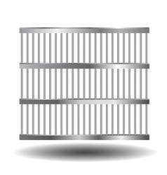 prison bars of steel vector image