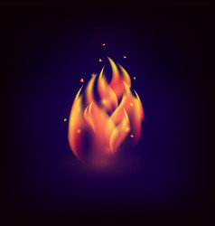 realistic fire flame vector image