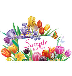 Arrangement with multicolor tulips flowers vector