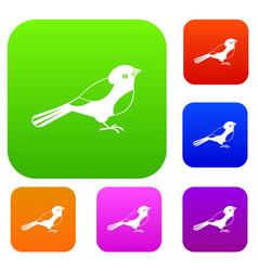 bird set collection vector image