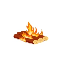 Bright bonfire in cartoon style vector image
