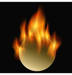 circle fire vector image