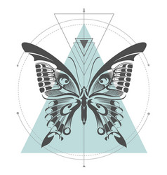 Machaon butterfly geometric vector