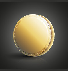 blank golden coin vector image