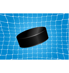 goal - a hockey puck in the net vector image vector image