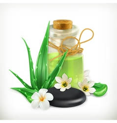 Aloe health and care icon vector image vector image