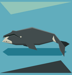flat design bowhead whale vector image vector image