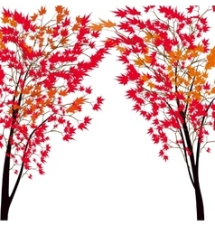 Card with autumn maple tree red maples japanese vector
