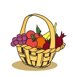 Fruit basket hand drawn vector image