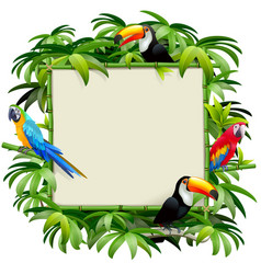 Bamboo frame with tropics birds vector