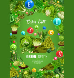 Color diet green healthy detox food nutrition vector